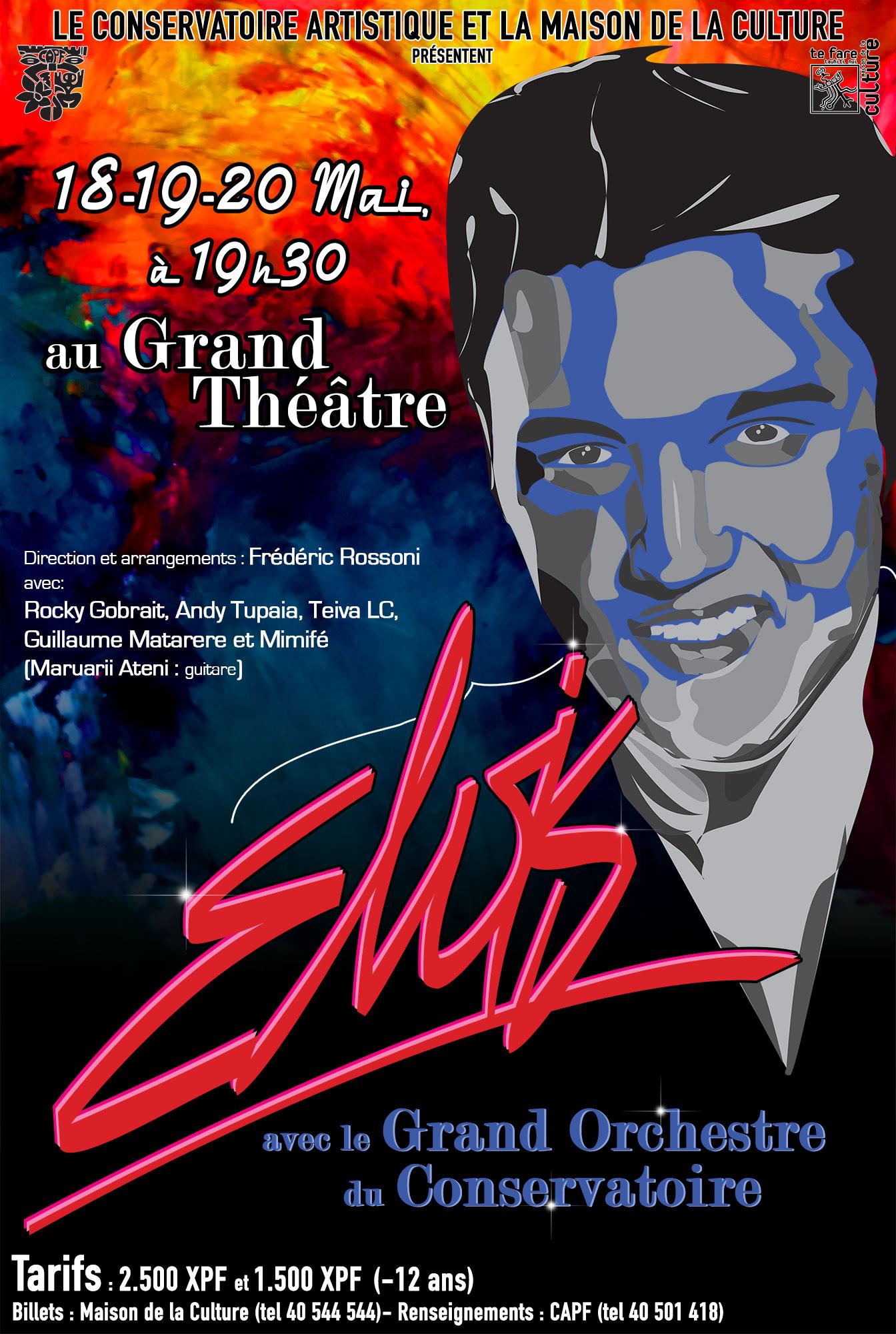 Concert Elvis
