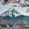 10-Japonais
