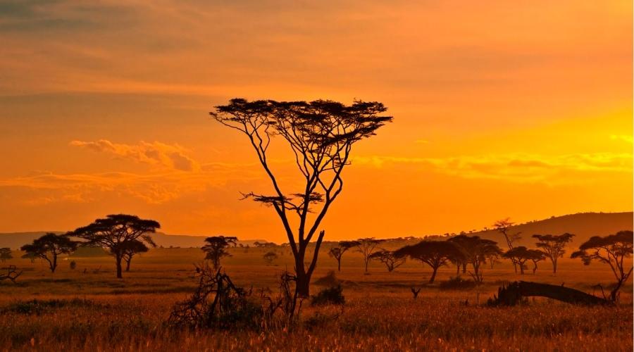 Heure du conte – Conte africain